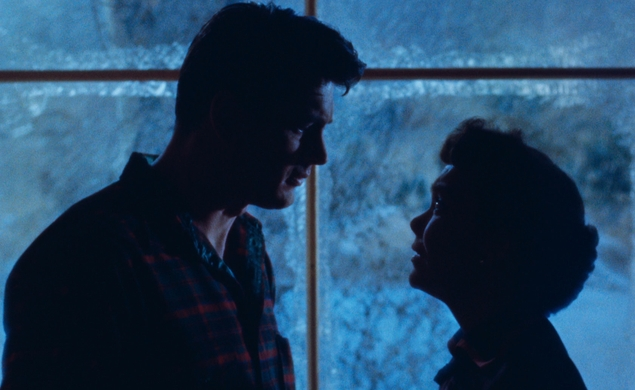 Our next Movie Of The Week: Douglas Sirk's All That Heaven Allows