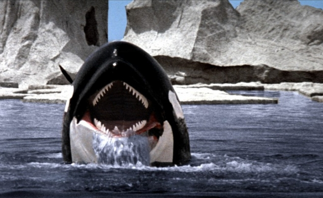 6/30/2015: Orca: The Killer Whale on Epix Drive-In
